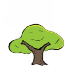 De nieuwe boomspiegel